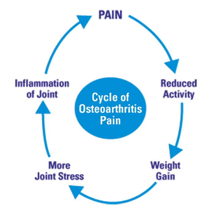 Cycle of OA Pain