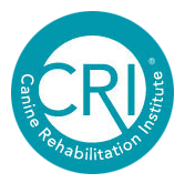 Canine Rehab Institute
